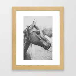 Wild Heart, No. 3 Framed Art Print