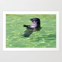 seal Art Prints featuring seal by  Agostino Lo Coco