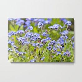 Meadow Flora Metal Print