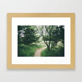 Happy Trails IX Framed Art Print
