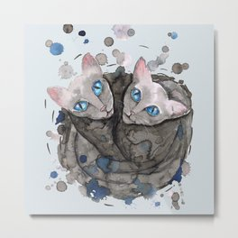 Two gray cat sisters Metal Print