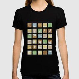 Hidden Plane T-shirt