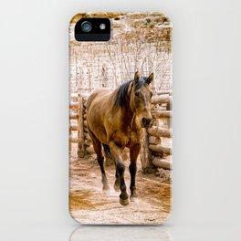Stampede iPhone Case