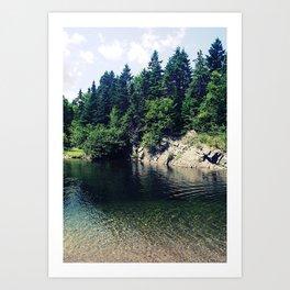 Water Hole Art Print