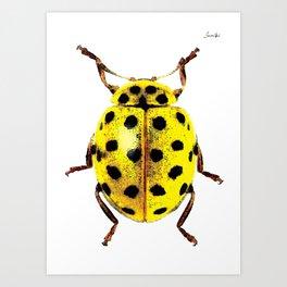 Insecte jaune et noir colors fashion Jacob's Paris Art Print