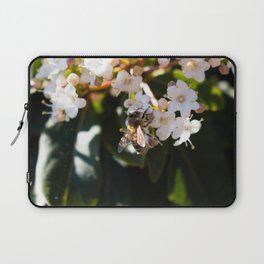 Bee in Late Winter (2 of 2) Laptop Sleeve