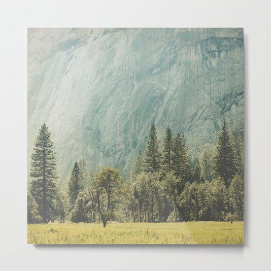 Yosemite Valley IV Metal Print