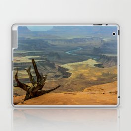 CanyonLand Laptop & iPad Skin