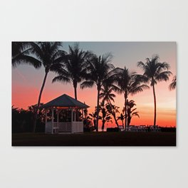 Tangling with Destiny Canvas Print