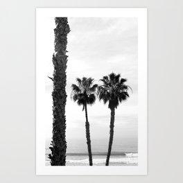 Palm Tree Noir #59 Art Print
