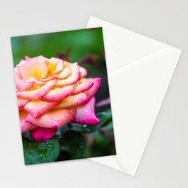 Rose, Columbus Ohio Stationery Cards