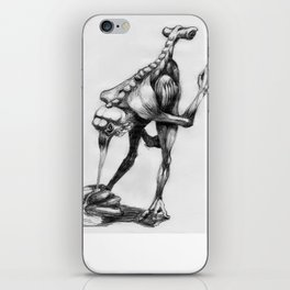 Collect iPhone Skin
