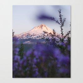 Mt Hood Wildflowers Canvas Print