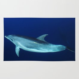 Dolphin, blue and sea Rug