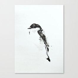 Birdie ii Canvas Print