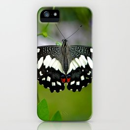 Butterfly Large iPhone Case