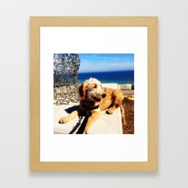 Goldendoodle Happiness Framed Art Print