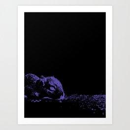 Baby Squirrel dreams on black Art Print