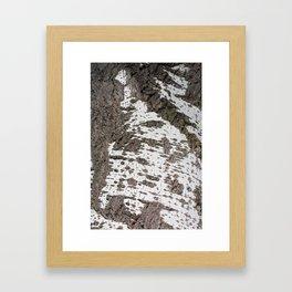 Birch bark pattern Framed Art Print
