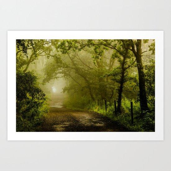 Misty Woodland Lane Art Print