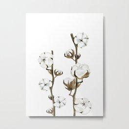 Cotton branches. Metal Print