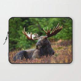 Relax Moose Laptop Sleeve