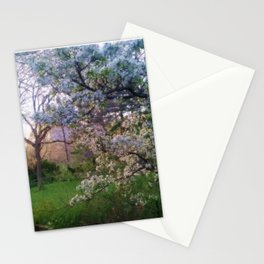 Evening Cherry Blossoms Stationery Cards