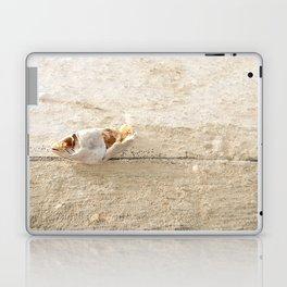Lost Fish Laptop & iPad Skin