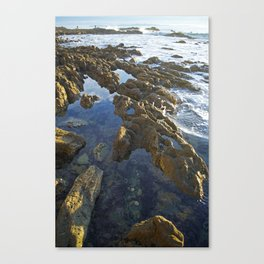 White Point Beach: Tide Pools in Late Afternoon Canvas Print