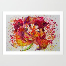 Dying Tulip Art Print