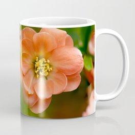 Coral Flowering Quince Bloom Coffee Mug