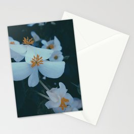 Flowers in the window 01 Stationery Cards