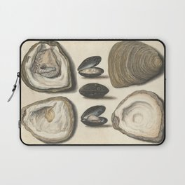 Vintage Oyster and Mussel Illustration, 16th Century Laptop Sleeve