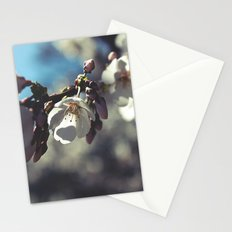 In The Sunlight Stationery Cards