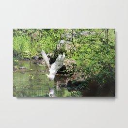 White Crane Bird River View Metal Print