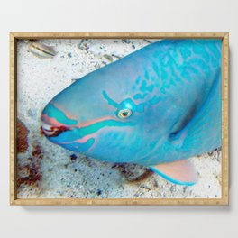 Watercolor Fish Queen Parrotfish, Coral Reef Savers Serving Tray