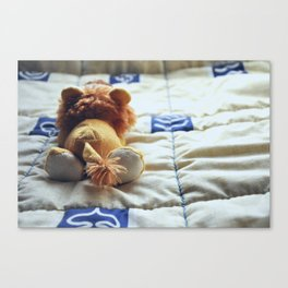 A Lonely One Canvas Print