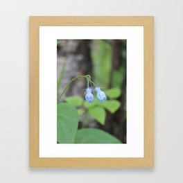 2 Bluebells Framed Art Print