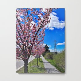 Spring on Waterman Drive, Knightville, South Portland, Maine Metal Print