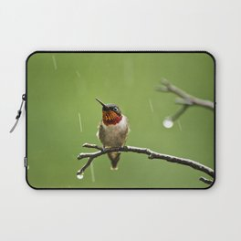 Hummingbird XIII Laptop Sleeve