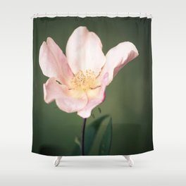 October flower Shower Curtain
