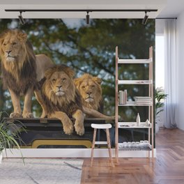 Lion Kings of the Serengeti, Africa Wall Mural
