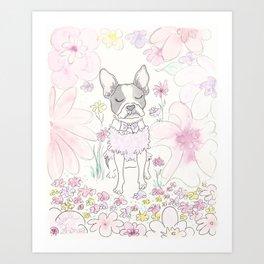 Beautiful Boston Terrier and Flower Wonderland Art Print
