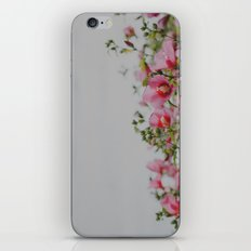 Pink Flowers iPhone & iPod Skin