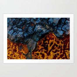 Colors texture of birch mushroom Art Print