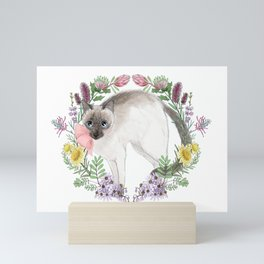 Pixie the Chocolate Siamese Cat Mini Art Print