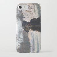 labrador iPhone & iPod Cases featuring Black Labrador    by Simon's Photography