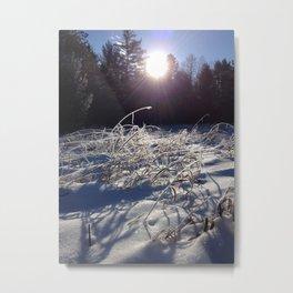 Winters frosty glow Metal Print