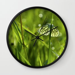 Butterfly in fresh morningmeadow Wall Clock
