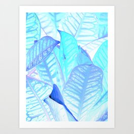 Blue Croton Tropical Leaves Art Print